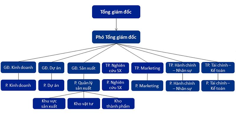 Cơ cấu tổ chức TLC Lighting